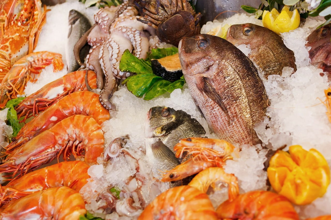 Axonn_seafood_2019_165220_1280
