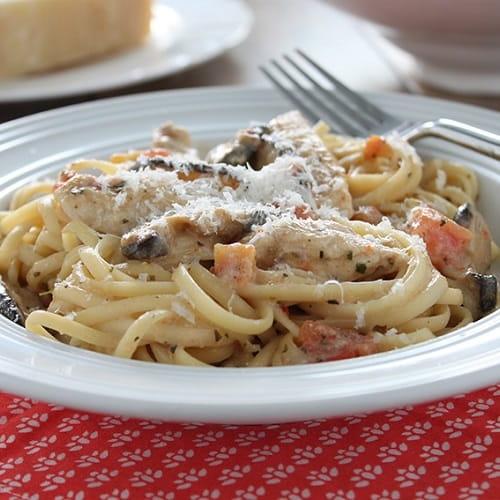 Poulet tetrazzini Italiano