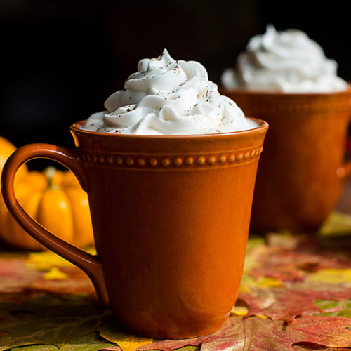 Slow Cooker Pumpkin Pie Spice Latte