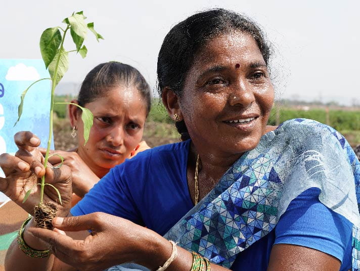 Woman farmer; gender equality in supply chain