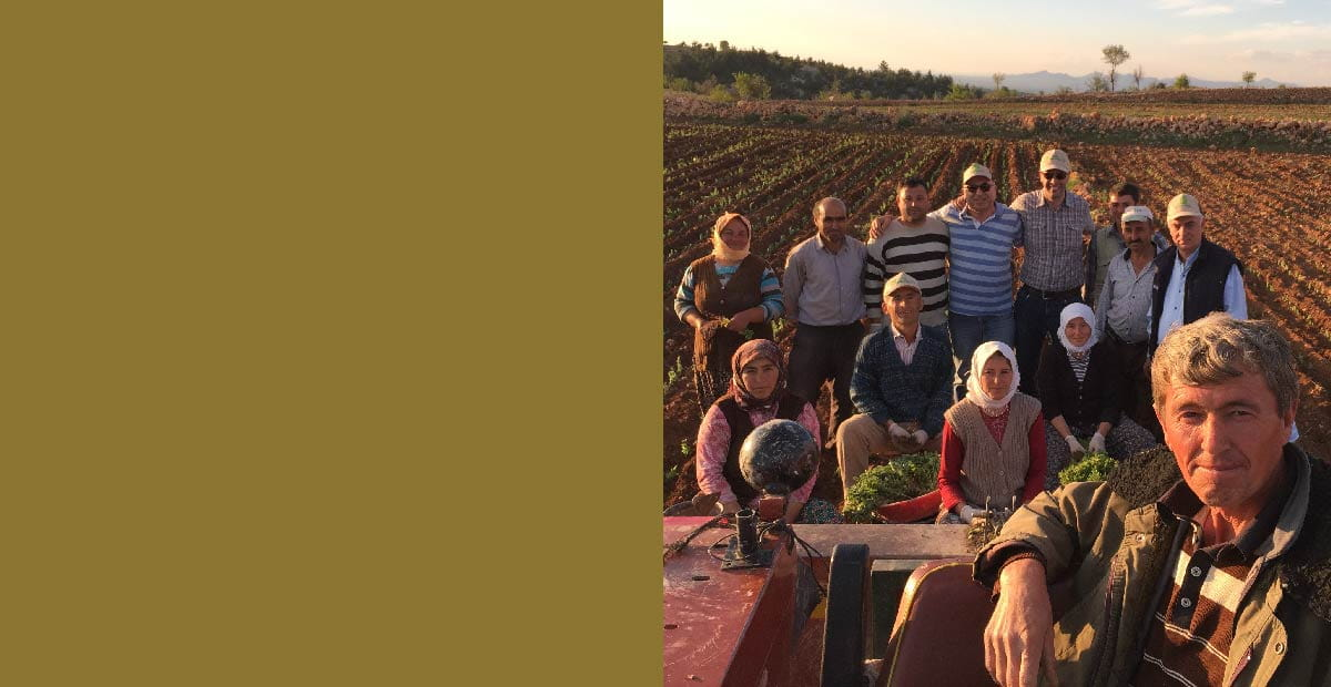 Grown for Good sustainability training certification; photo of farmers