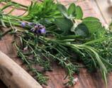 Cuisinez avec les herbes et aromates