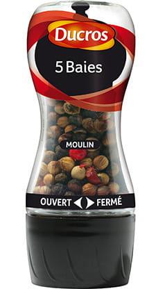 Moulin 5 Baies