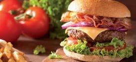 https://d1e3z2jco40k3v.cloudfront.net/-/media/foodservicefr/recettes/burger-smokey.jpg?rev=def68012e6534455985a38bcf2189a20&vd=20200611T221848Z&hash=D33BEE22663463487CEA993EB321E5D6