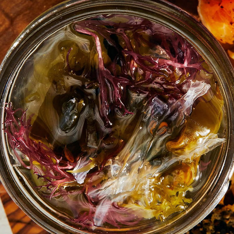 https://d1e3z2jco40k3v.cloudfront.net/-/media/foodservicefr/recettes/ff2021/ff21_underwater-under-discovered_mixed-seaweed-pickles_800x800.jpg?rev=5ca987256cfb4189be22b1f575964089&vd=20210902T160224Z&hash=2DA009665840AAD85ECABC1BEF8D72B0