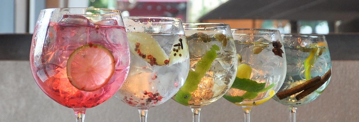 Gin Receitas - Gin by Margao