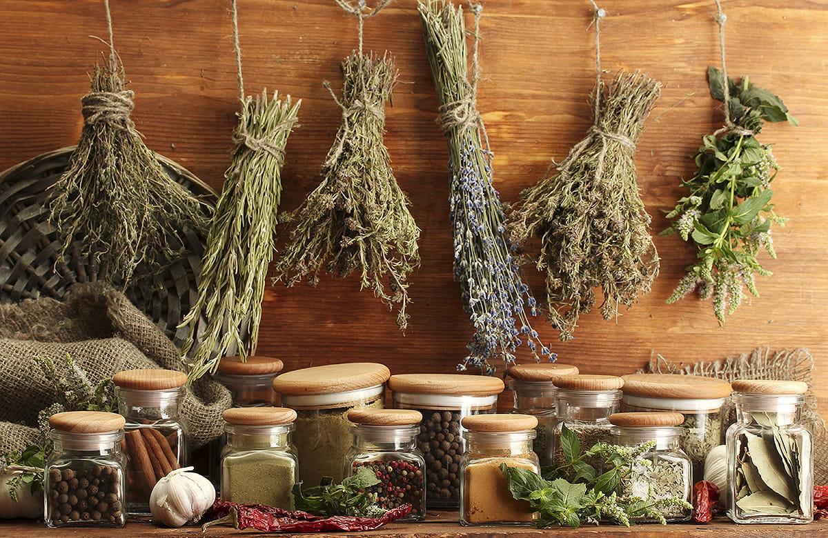 Geschmack, der zusammen passt – Teil 1: Basilikum, Dill, Schnittlauch und Oregano