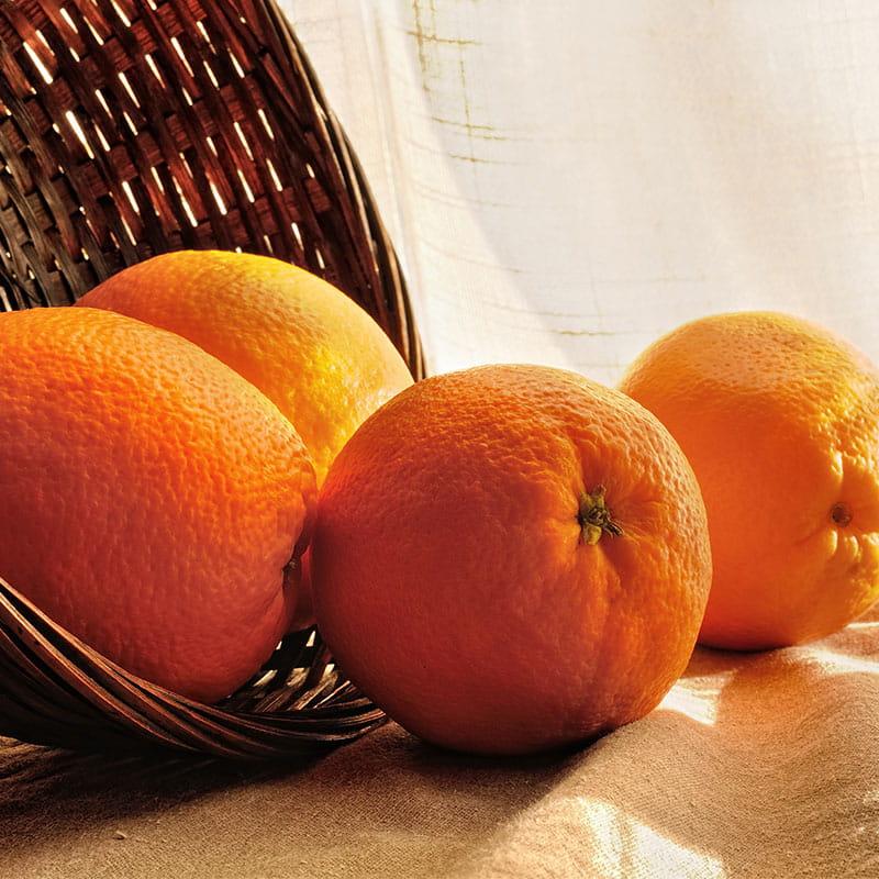 Orangen-Kokosmakronen Torte