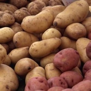 Many Britons now grow their own potatoes