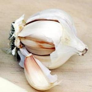 Garlic can flavour pasta dishes
