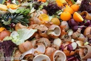 Waste food could be providing electricity for your home