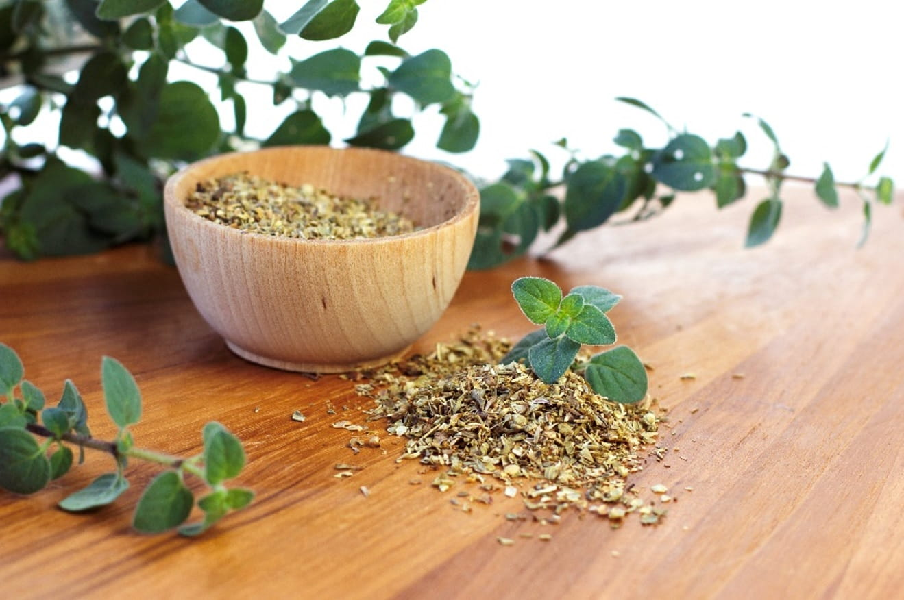MSI Funded Paper: Potential Health Benefits of Oregano