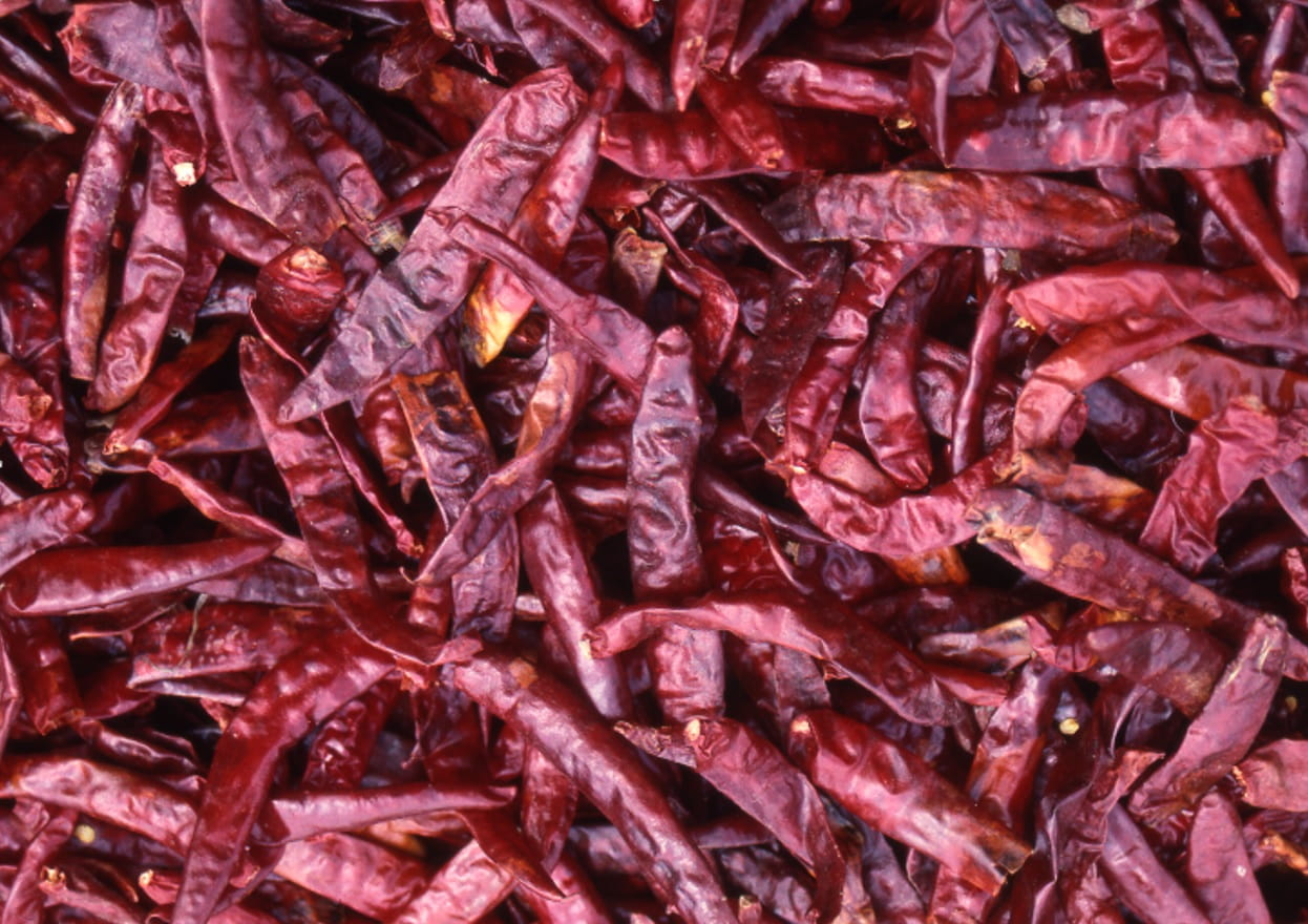 MSI Funded Study: Red Pepper, Thermogenesis and Appetite