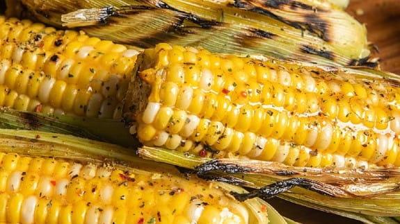 Thanksgiving-corn