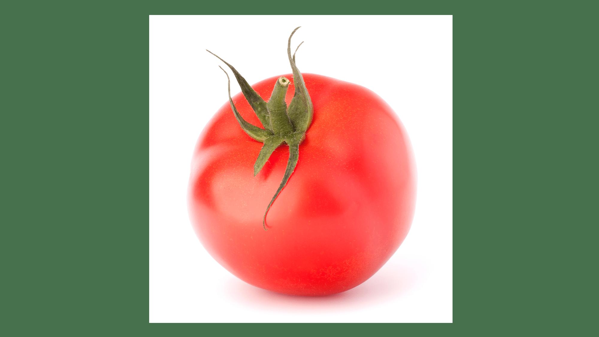 Silvo-tomaat-2000x1125