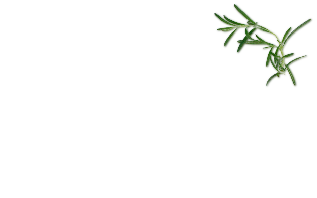 Flaxseeds Ingredient